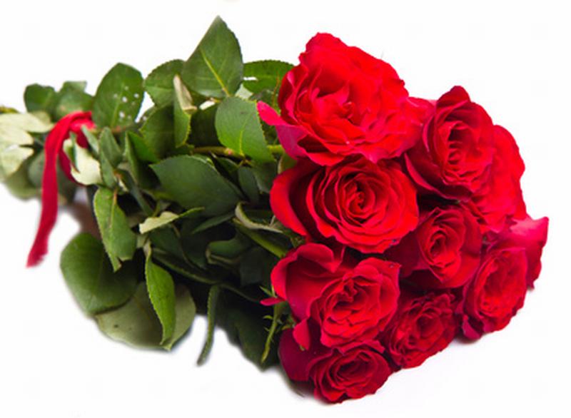 Lac me shop mazzi di fiori for Disegni del mazzo del cortile